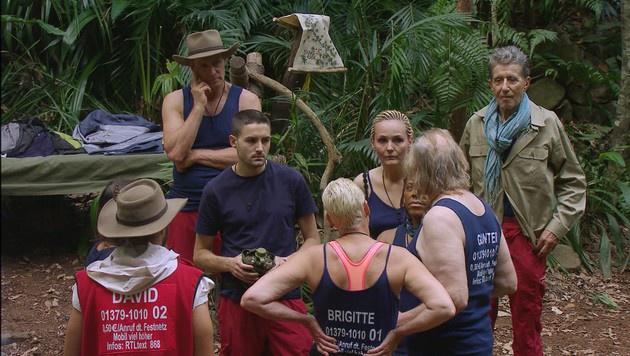 Gunter verkündet seine Entscheidung, das Camp zu verlassen, den Mitcampern. (Bild: RTL)