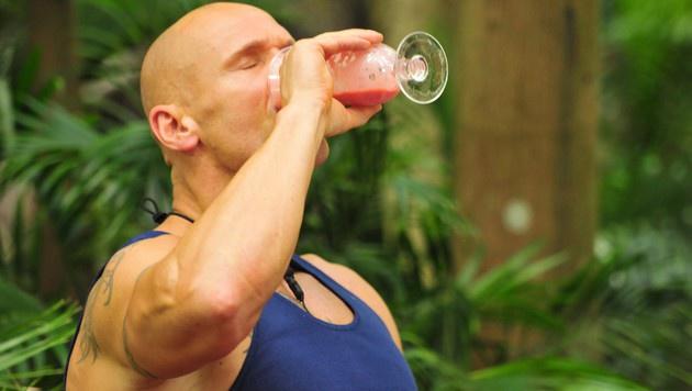 Und runter damit! Thorsten trinkt tapfer seinen Dschungeldrink. (Bild: RTL)