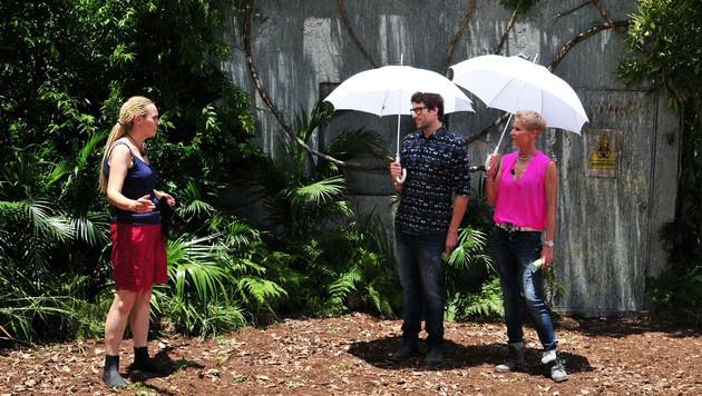 Helena wird von Daniel und Sonja begrüßt. (Bild: RTL)