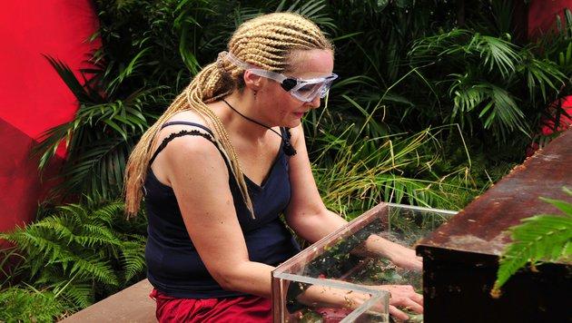 Helena bei der Dschungelprüfung (Bild: RTL)