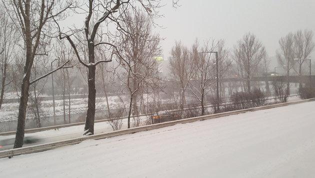 Mildere Temperaturen machen Schnee den Garaus (Bild: krone.at)