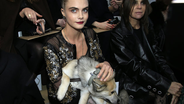 Caras Delevingnes Hund pinkelt auf Chanel-Laufsteg (Bild: AP)