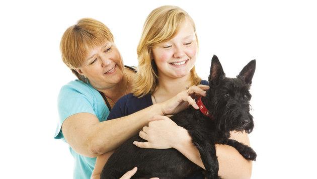 Abnehmen und damit Gutes für den Tierschutz tun (Bild: thinkstockphotos.de)