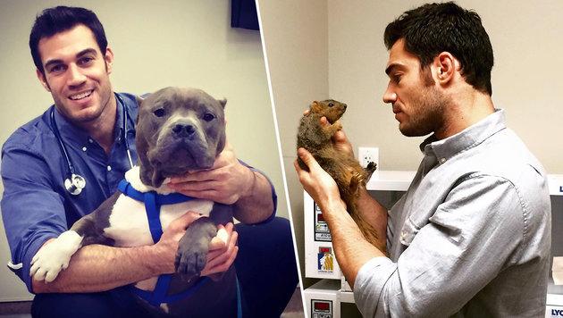 Ist Evan Antin der heißeste Tierarzt der Welt? (Bild: facebook.com/Dr. Evan Antin)