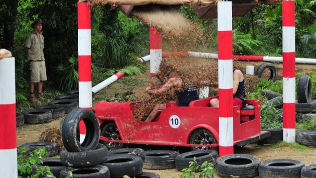 Die Camper kriegen eine Ladung Dschungelbewohner ab. (Bild: RTL)