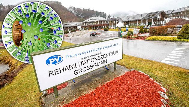 Schweinegrippe grassiert in Salzburger Klinik (Bild: Markus Tschepp, â01EKroneâ01C)