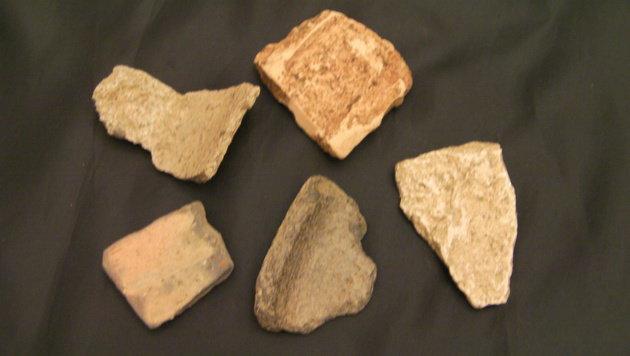 Auch unzählige Tonscherben und keltische Münzen wurden von einigen Grundbesitzern entdeckt. (Bild: Arge Noreia/Josef Stockinger)
