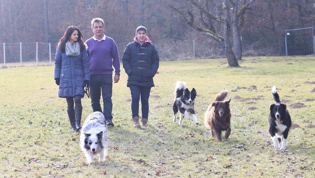 Die wertvollen Suchhunde haben generell ein tolles Leben! (Bild: Jürgen Radspieler)