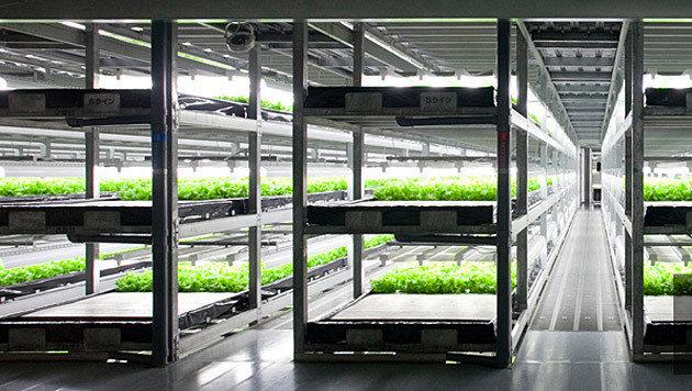 Das vollautomatisierte Gewächshaus der Firma Spread (Bild: Spread.com)