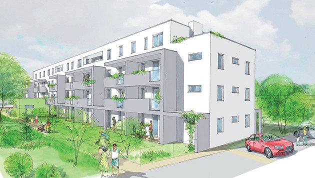 300 Wohnungen und 40 Reihenh�user im Eigentum (Bild: AURA Wohnungseigentums GmbH)