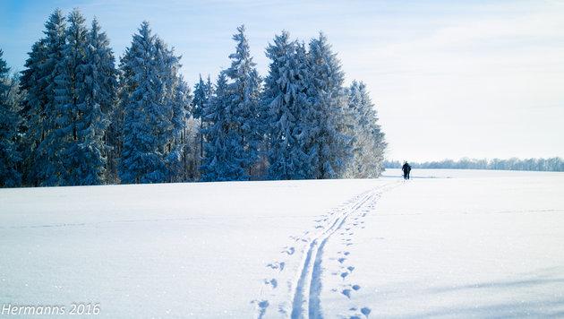 krone.at sucht Ihre Winterfotos! (Bild: Helmut Elsen)