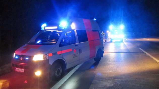 Auto auf A2 überschlagen: Vier Grazer verletzt (Bild: Presseteam der Feuerwehr Wiener Neustadt)