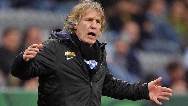 Bochum-Coach Gertjan Verbeek (Bild: GEPA)