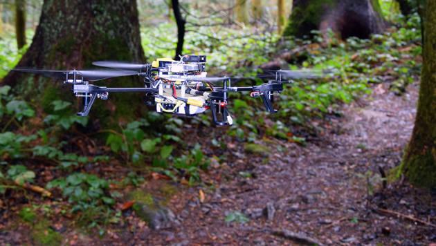 Intelligente Drohne erkennt Waldwege und Pfade (Bild: UZH;USI;SUPSI)