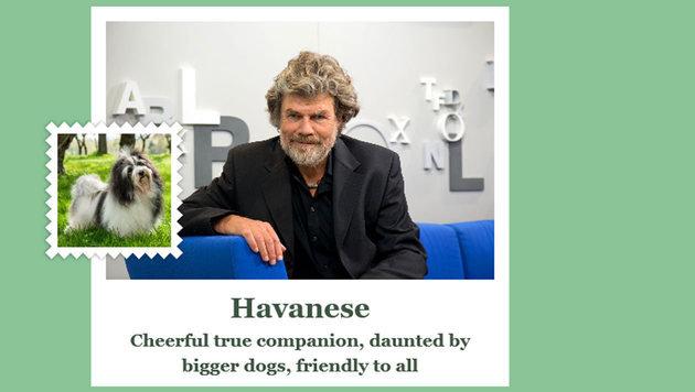 Reinhold Messner ist allen gegenüber ein echter Freund, nur große Hunde schüchtern ihn ein. (Bild: what-dog.net)