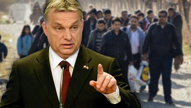 Wortf�hrer der Blockierer: Ungarns Ministerpr�sident Viktor Orban (Bild: APA/AFP/ATTILA KISBENEDEK, APA/AFP/DIMITAR DILKOFF)