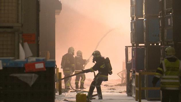 Großbrand nach Explosion fordert 300 Einsatzkräfte (Bild: BFV LIEZEN/Schlüßlmayr)