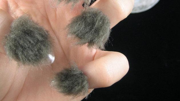 """Jetzt bekommen die Fingernägel Haare (Bild: peacelovepolish)"""