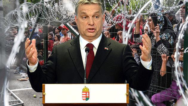 Orban l�sst Ungarn �ber Fl�chtlingszahl abstimmen (Bild: APA/AFP/Attila Kisbenedek, APA/AFP/Armend Nimani)
