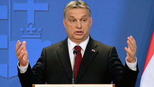Viktor Orban (Bild: APA/AFP/ATTILA KISBENEDEK)