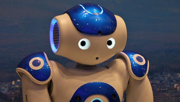 """Roboter sollen """"elektronische Personen"""" werden (Bild: Dominik Erlinger)"""