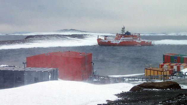 Auf Eisbrecher festgesessen: 37 Forscher geborgen (Bild: APA/AFP/AUSTRALIAN ANTARCTIC DIVISION/CHRIS HILL)