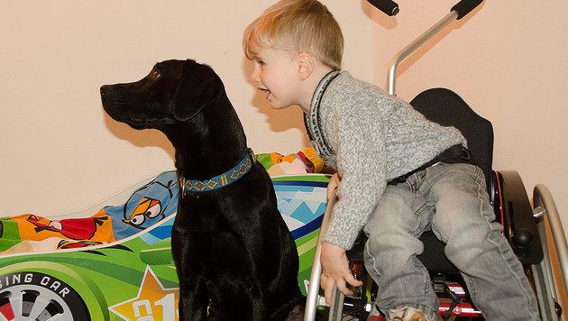 Niclas (4) ist eines von zwei Kindern mit der seltenen Krankheit in Österreich. (Bild: Familie Pessenteiner)