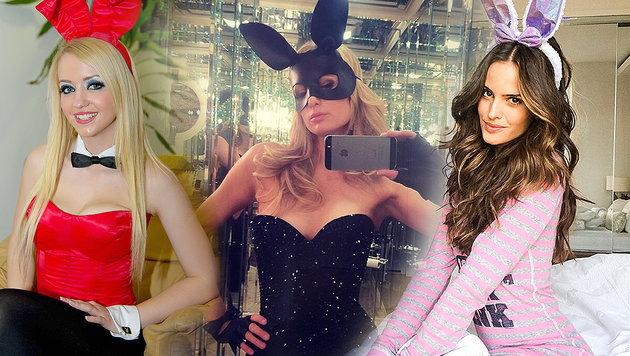 Sexy mit Bunny-Ohren: Die süßesten Star-Haserln (Bild: Viennareport, Face to Face)
