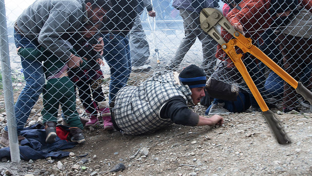 Grenzzaun: Asyl-Lobby verteilt Bolzenschneider (Bild: ASSOCIATED PRESS, thinkstockphotos.de)