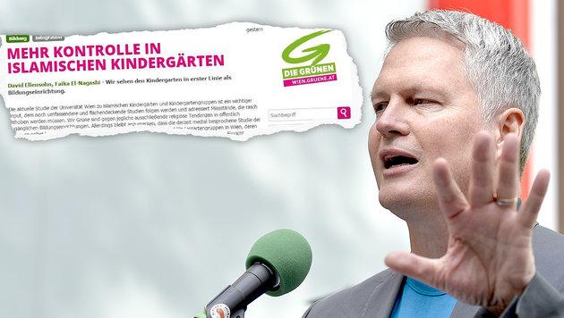 Jetzt rufen auch die Grünen nach mehr Kontrolle (Bild: Die Grünen, APA/HERBERT NEUBAUER)