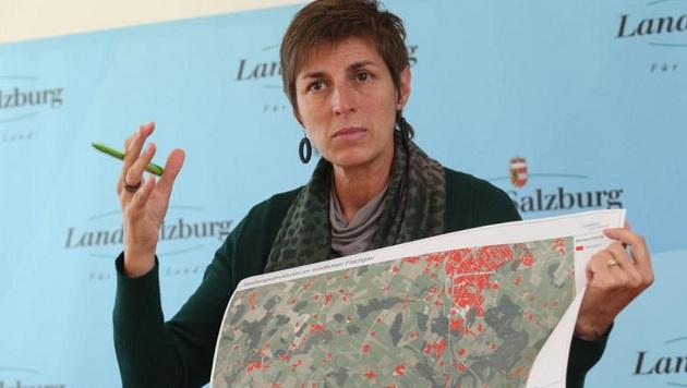 Grüne-Chefin Astrid Rössler gibt sich kämpferisch. (Bild: Franz Neumayr/LMZ)