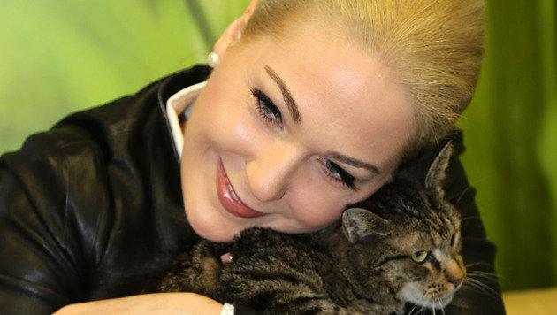 "Katze ""Mindi"" fühlte sich bei Kathrin Glock wohl. (Bild: Evelyn Hronek)"