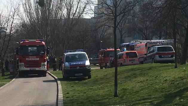 Auto in Wiener Donaukanal gestürzt: Toter geborgen (Bild: Andre Wanne)