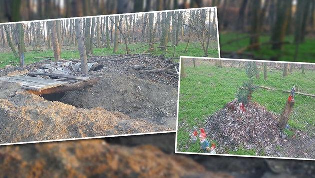 Illegaler Grusel-Bunker im Grünen Prater planiert (Bild: Wiener Naturwacht)