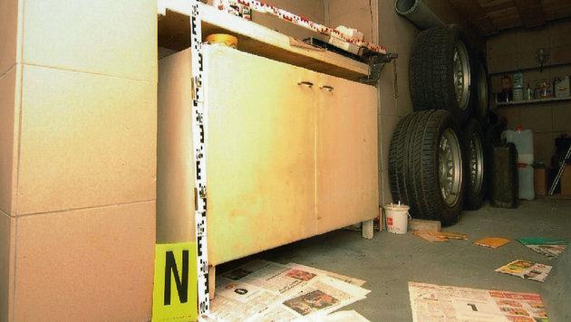 Geheime Videoprotokolle aus dem Kellerverlies (Bild: APA/REPRO/BUNDESKRIMINALAMT)