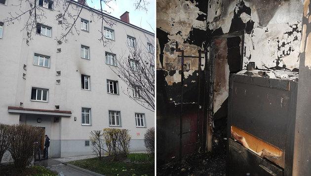 In diesem Gebäude brach das Feuer aus. Die Flammen wüteten heftig. (Bild: MA 68 Lichtbildstelle)