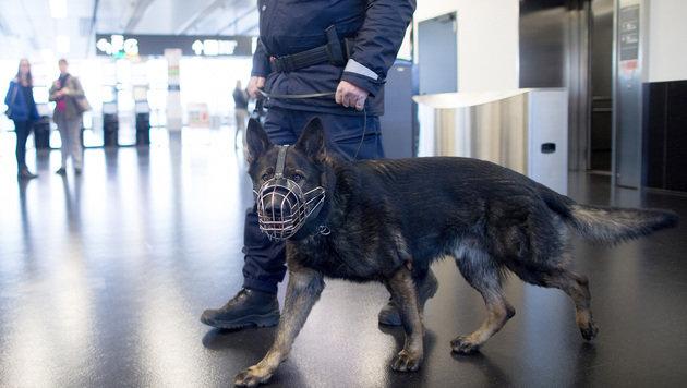 Zwei Bodypacker am Wiener Airport entlarvt (Bild: APA/GEORG HOCHMUTH)
