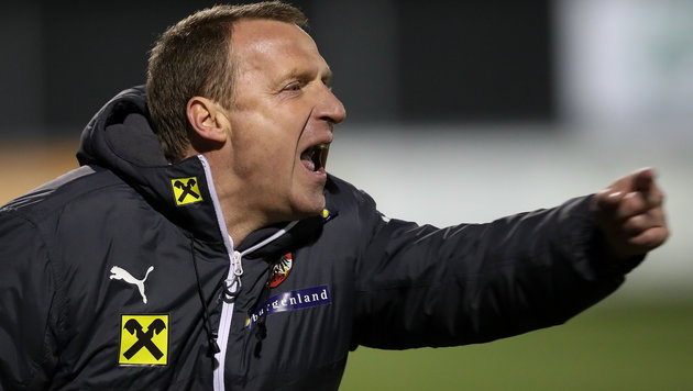 ÖFB-U19-Trainer Marko (Bild: GEPA)
