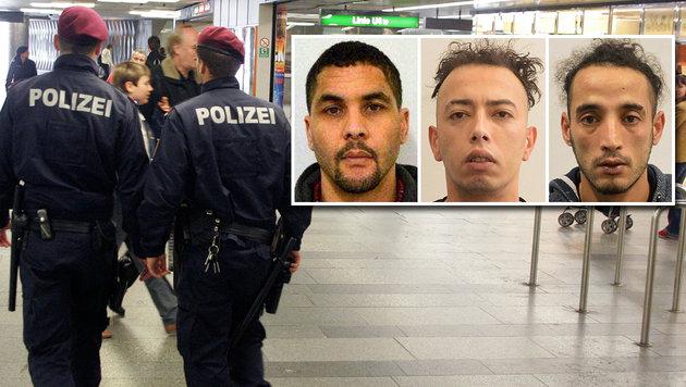 Diese Verdächtigen sind gefasst. Nun sucht die Polizei mit den Fahndungsfotos nach weiteren Opfern. (Bild: Andi Schiel, LPD Wien)