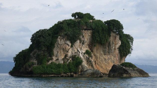 Los Haitises ist einer der bedeutendsten Nationalparks der Dominikanischen Republik. (Bild: dez)