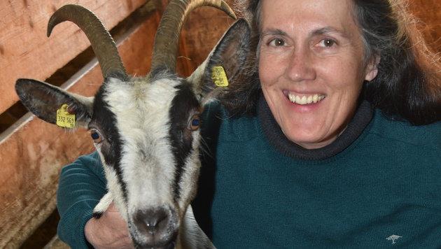 """""""Ich liebe Ziegen"""", sagt Ruth Maria Wallner, die die seltenen Pfauenziegen züchtet. (Bild: Wolfgang Weber)"""