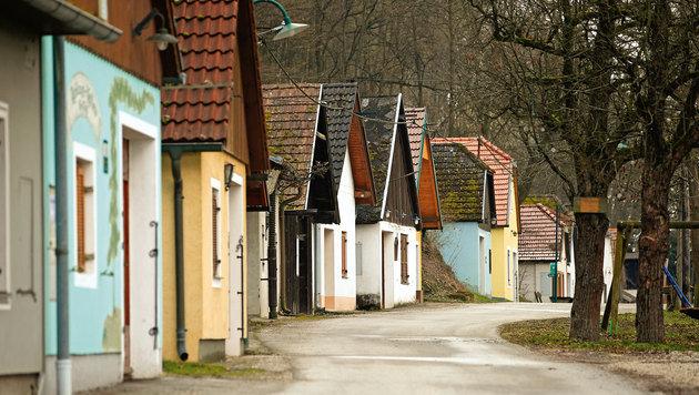 Die Ahrenberger-Eichberger Kellergasse wird ganzjährig bewirtschaftet. (Bild: Reinhard Holl)