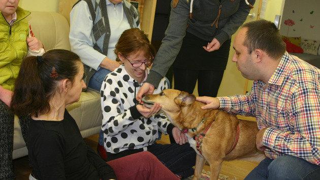 """Klientin Herta (links) hatte früher selbst einen Hund und hat zu """"Sissi"""" eine besondere Beziehung. (Bild: Claudia Fischer)"""