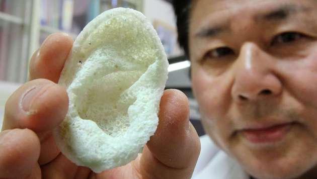 Ein Forscher der Universität Tokio zeigt ein mittels 3D-Drucker aus Polyactiden gefertigtes Ohr. (Bild: AFP)