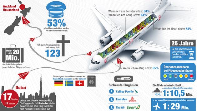 Kuriose Fakten über das Fliegen (Bild: Krone-Grafik)