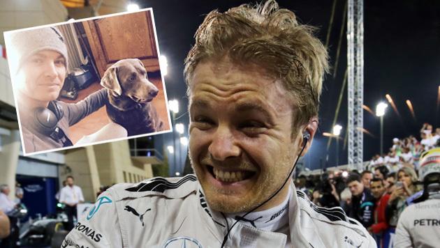 "Nico Rosberg: ""Sogar mein Hund flippte total aus"" (Bild: GEPA, facebook.com)"