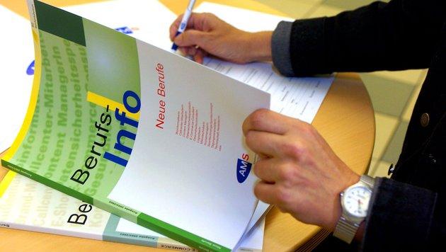 AMS will heuer 404.000 freie Stellen besetzen (Bild: APA/Barbara Gindl)