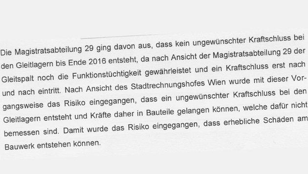 """RH-Bericht zur Reichsbrücke: Risiko von Schäden am Bauwerk (Bild: """"Krone"""")"""