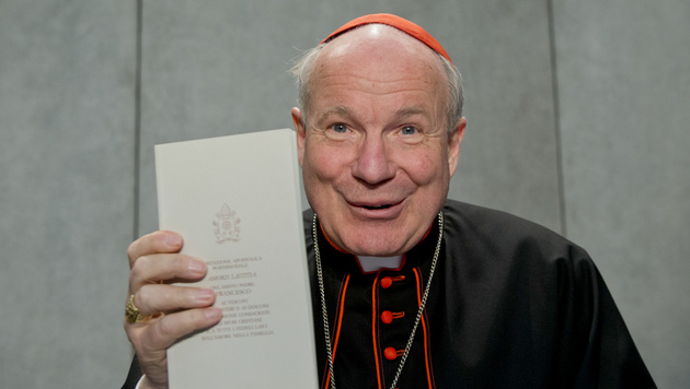 Ein sichtlich erfreuter Kardinal Schönborn bei der Pressekonferenz im Vatikan (Bild: AP)