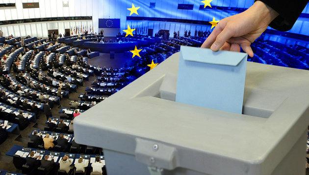 EU-Gr�ne wollen Verbot von Volksabstimmungen (Bild: APA/HERBERT PFARRHOFER, AFP, thinkstockphotos.de)